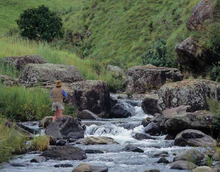 Drakensberg Fly Fishing